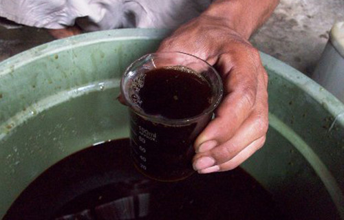 Membersihkan Jamur Pada Kaca Dengan Air Tembakau
